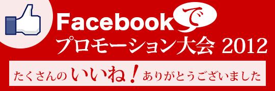 Facebookプロモーション2012のページへ
