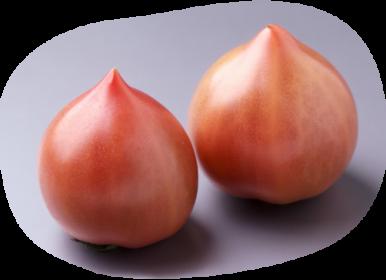 水気耕トマト・三谷